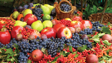 Photo of რომელი ხილი ასუქებს და რომელია ყველაზე დაბალკალორიული?
