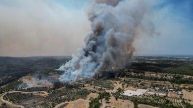 Photo of თურქეთში, ტყის ხანძრების შედეგად დაღუპულთა რაოდენობა რვამდე გაიზარდა